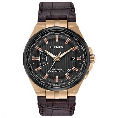 Citizen Eco-Drive World Perpetual A-T